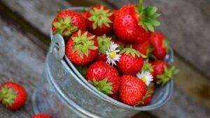 Khasiat Buah Stroberi Bagi Kesehatan Tubuh